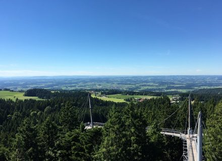 Baumkronenweg Allgäu